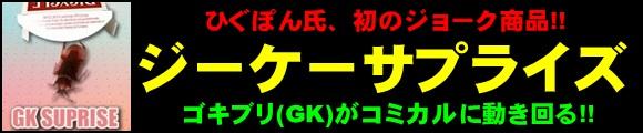 『ジーケーサプライズ byひぐぽん (GK SURPRISE)』