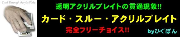 カード・スルー・アクリルプレイト byひぐぽん