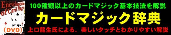 『カードマジック辞典 by.上口龍生(日本語DVD)』